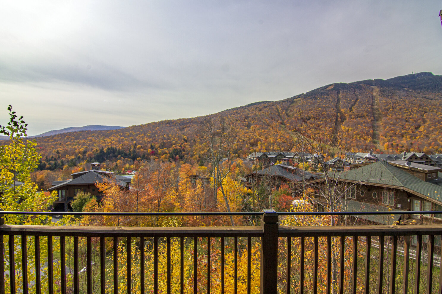16-2019-10-15 IMG_5408 View to the Mountain from the Balcony.jpg