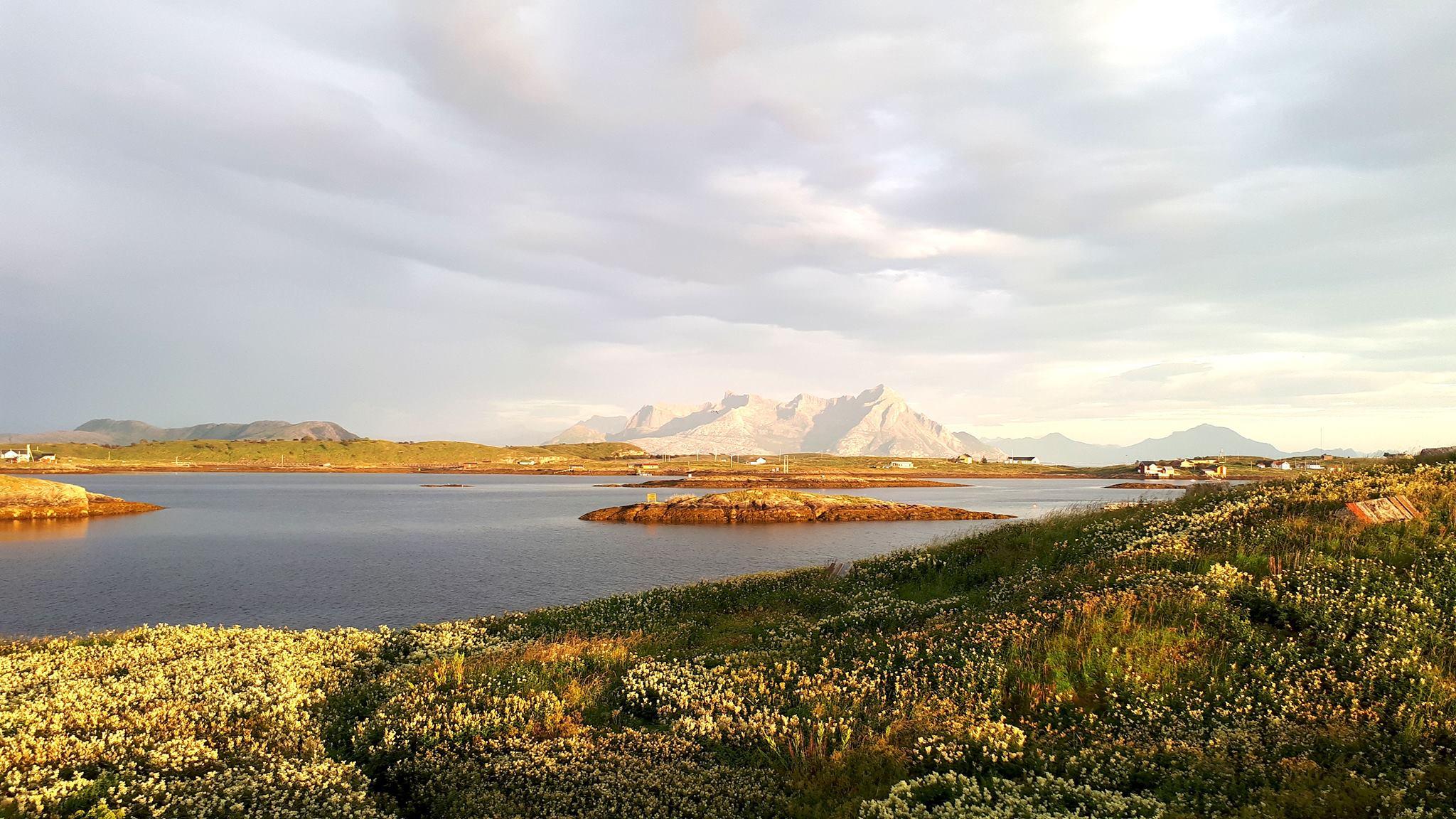 Mevær Camp - Fleinvær - Nyrenoverte leiligheter med plass til 14 personer. Stedet er laget for de som vil unnslippe byens støy og mas, med muligheter for fisketur, fottur eller avslapning. Åpner våren 2020.