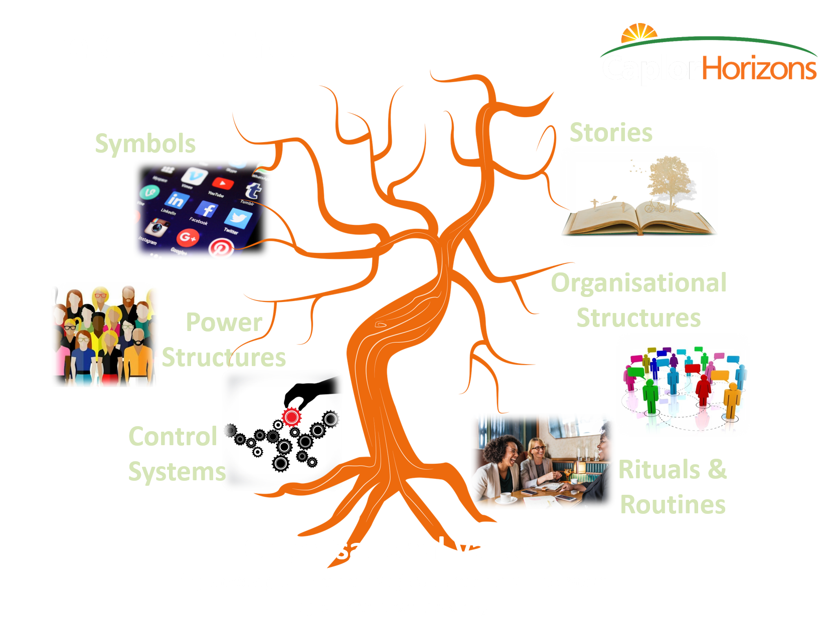 The Culture Tree - We use our 'Culture Tree' to help organisations diagnose and strengthen their culture.The tree emphasises the living, dynamic, changing nature of culture.