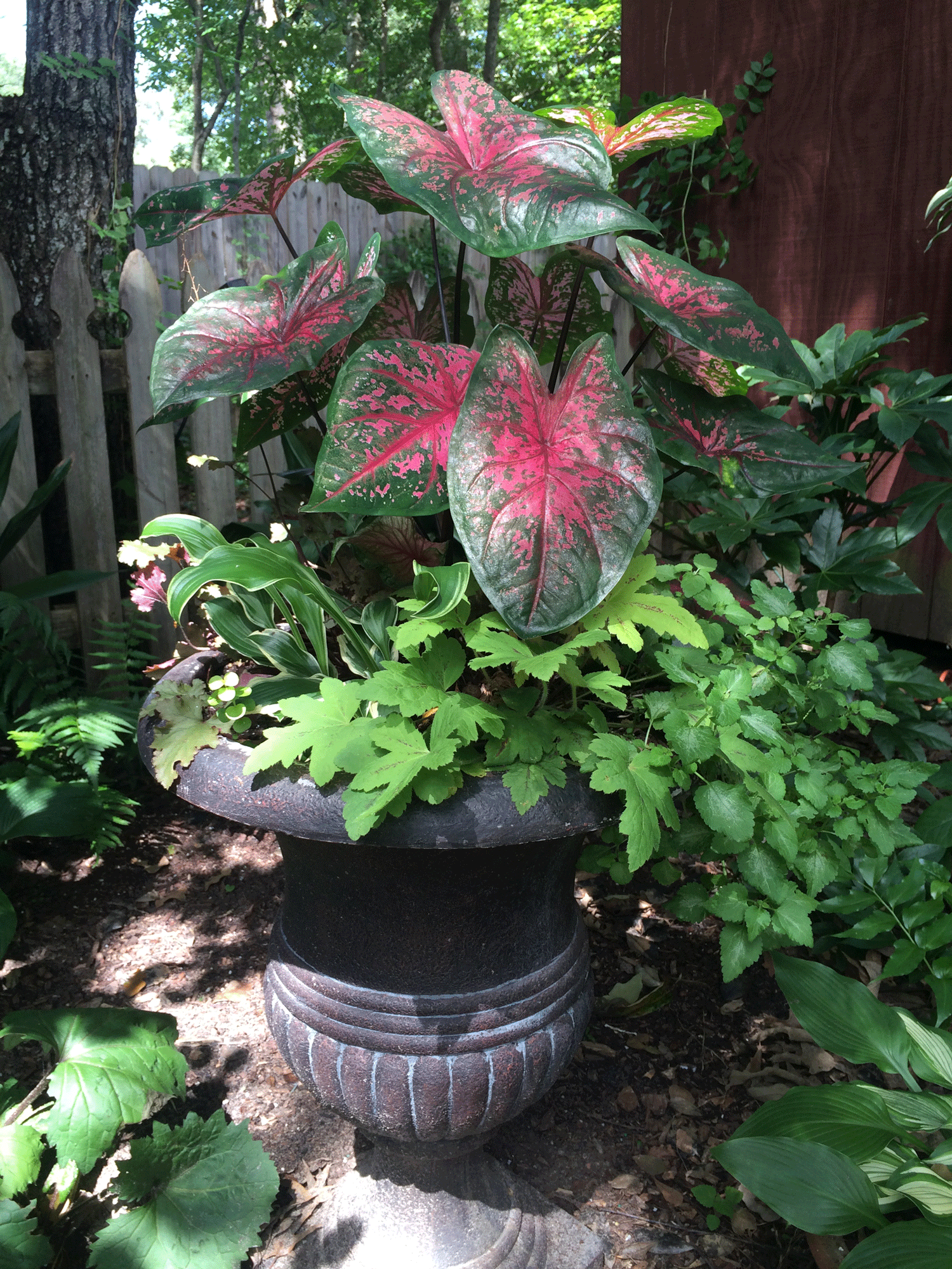 Urn with container garden