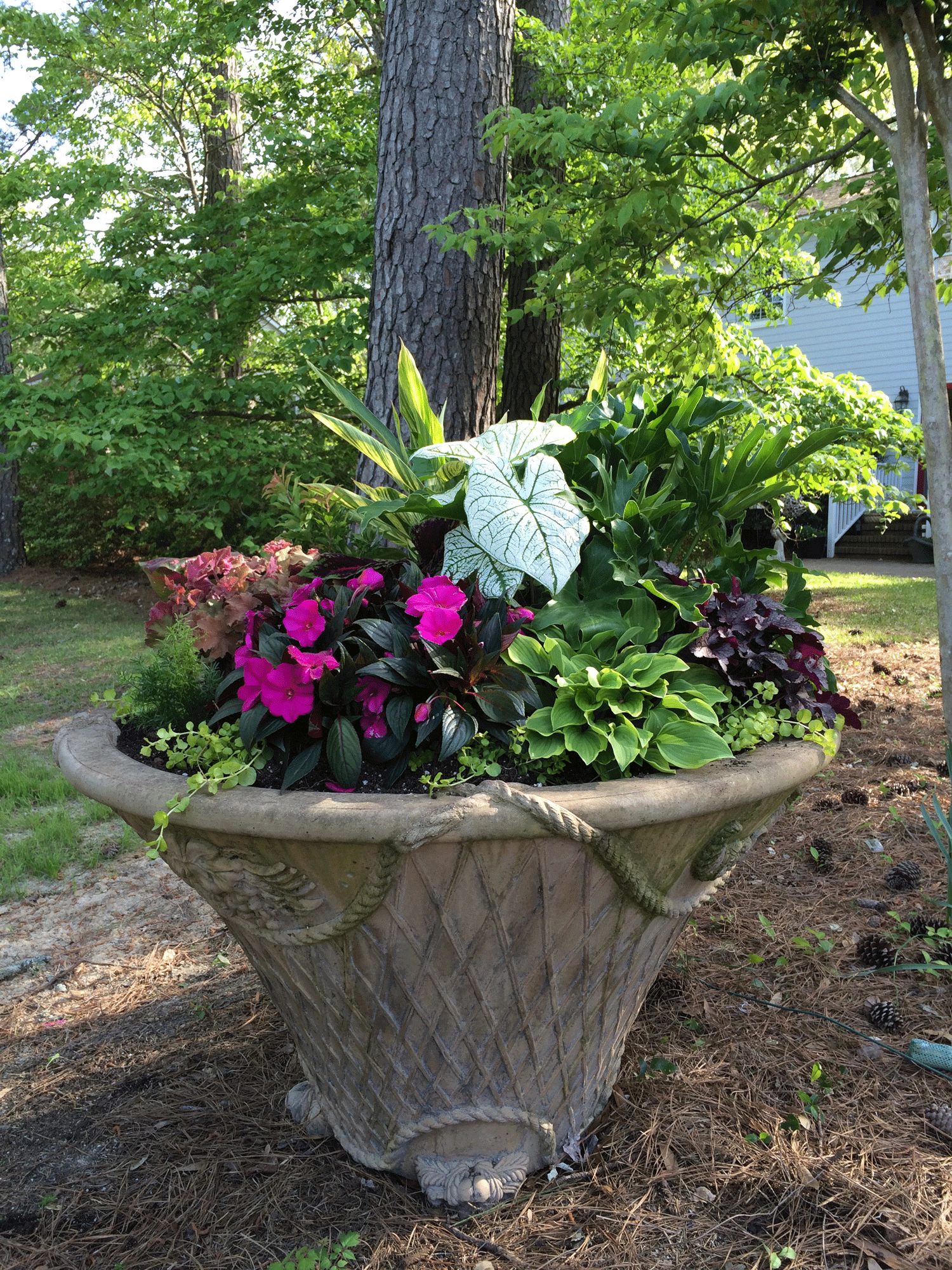 Container garden with plants and flowers