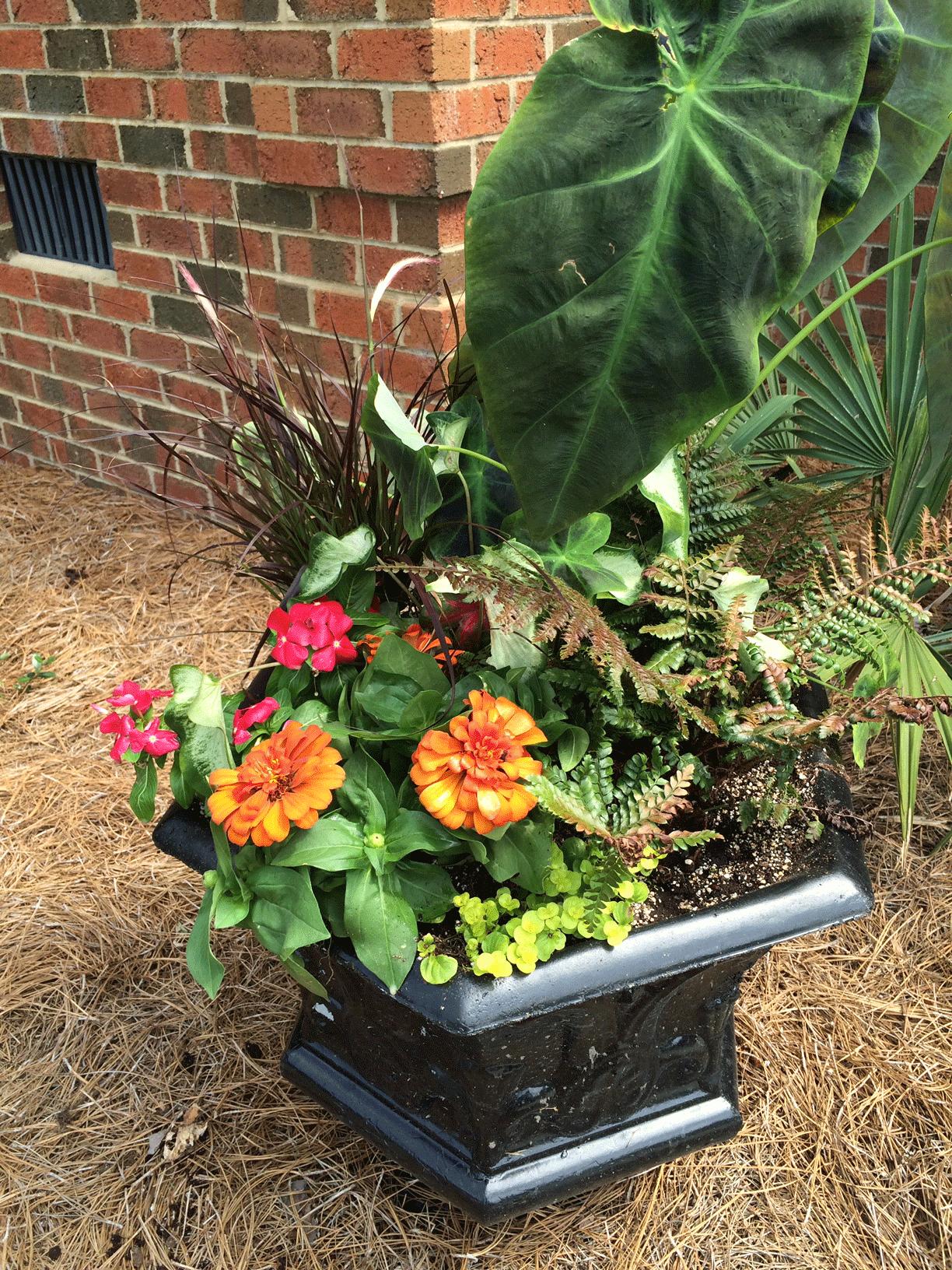 Flower garden container in urn