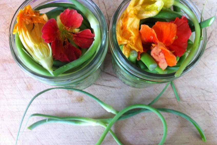 pickledgarlicscapes.jpg