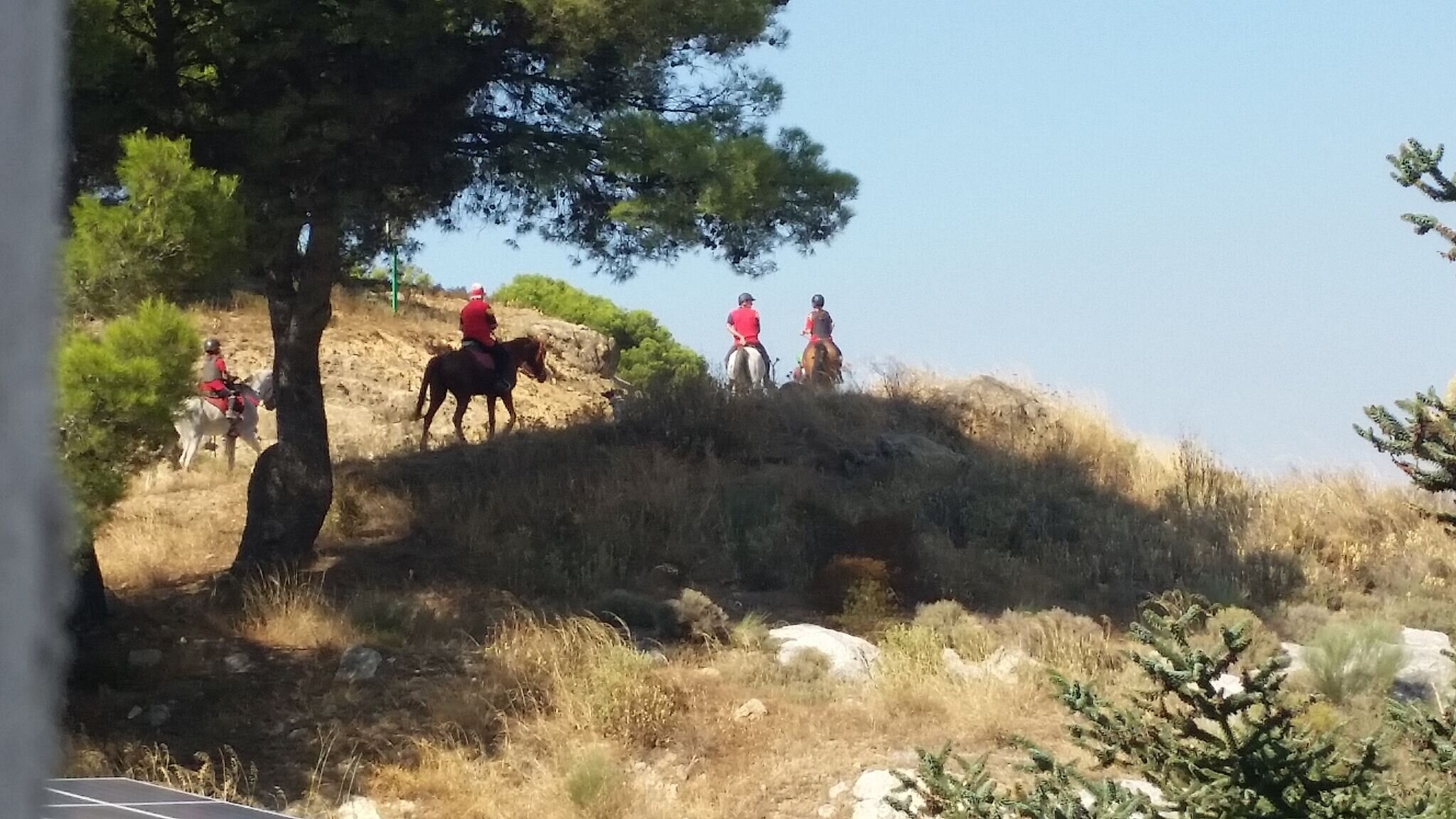 Treking on horseback through the mountains