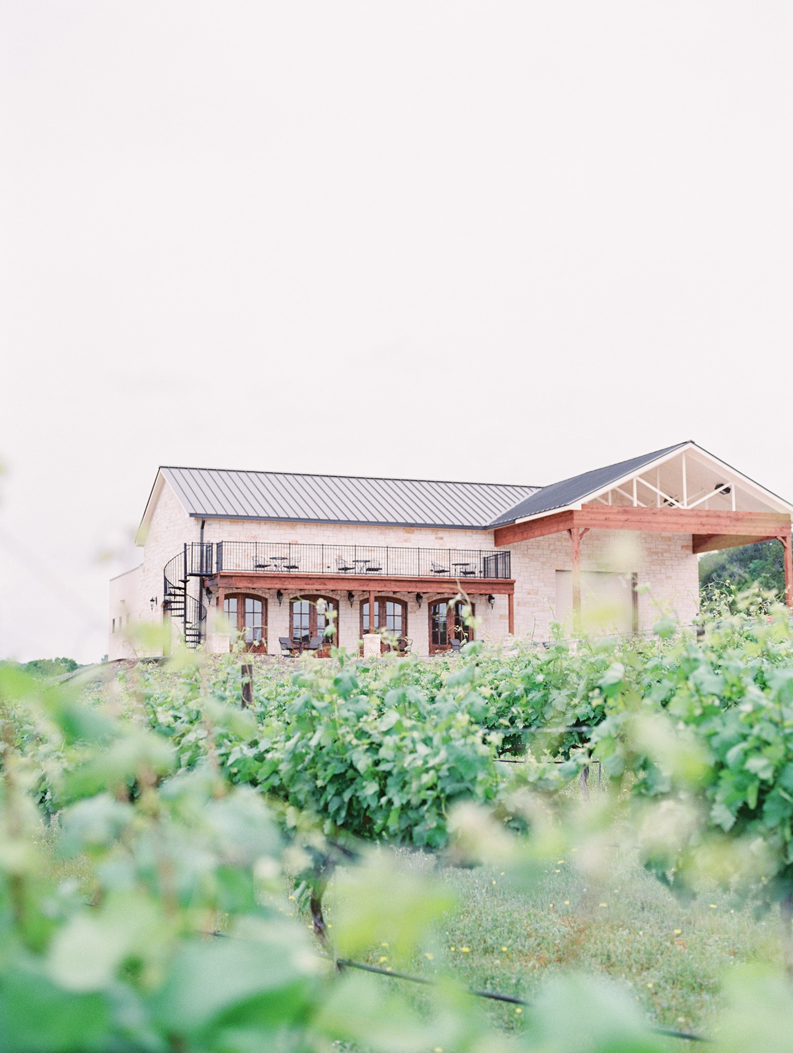Valley Mills Vineyards