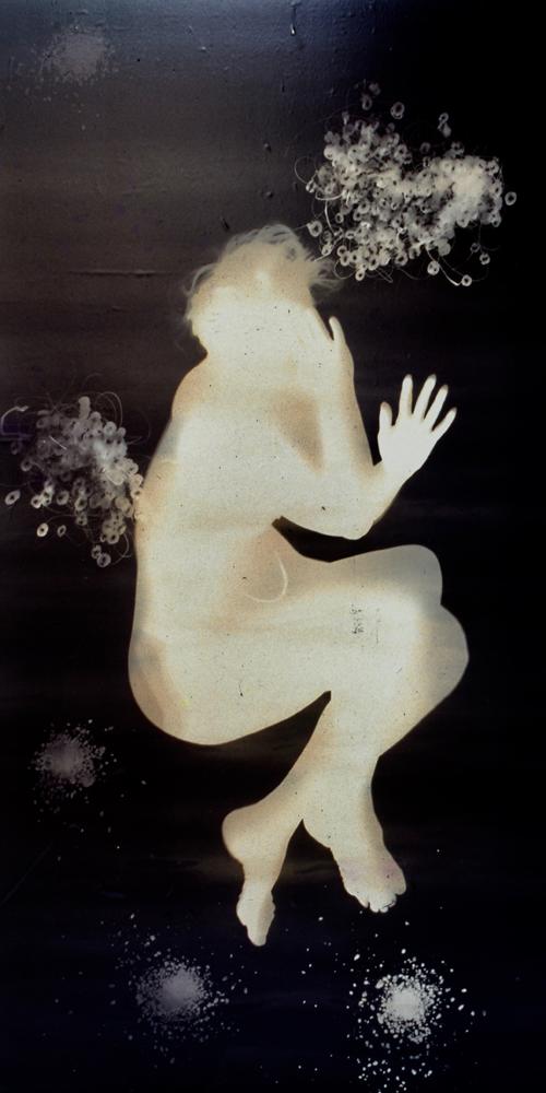Cee 2  Gold Albumen Photogram 5' x 3 1/2' 1985
