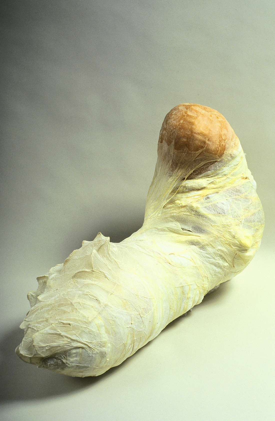 """Your Name Here Cotton, sausage casings leather latex, 16"""" x 42"""" x 19"""" 1998"""
