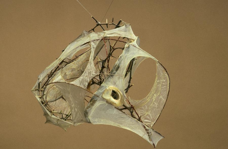 "Culerbra Thorns, sausage casings, bone 10"" x 12"" 1996"