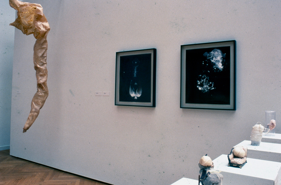 """Mills""  Installation - mixed media various sizes Oakland CA 1998"