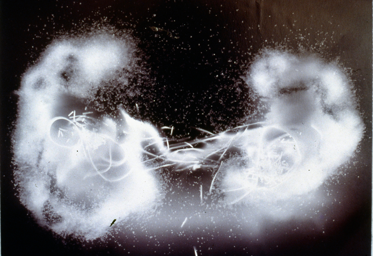 "Us Gold albumen photogram, 16"" x 24"", 1999"
