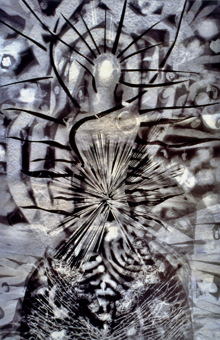 Shakti  Gold albumen photogram, 5' x 3 1/2', 1999