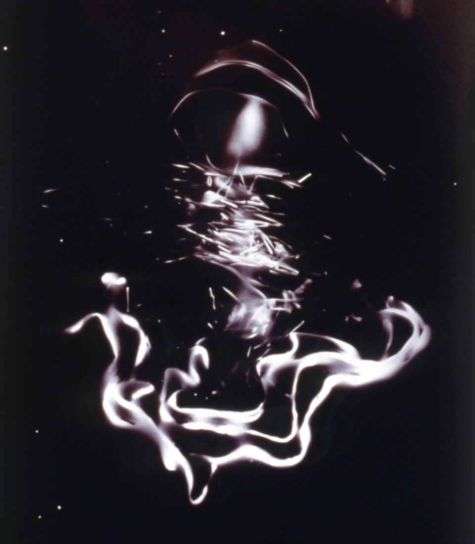 "GA014  Gold albumen photogram, 24"" x 16"", 1999"