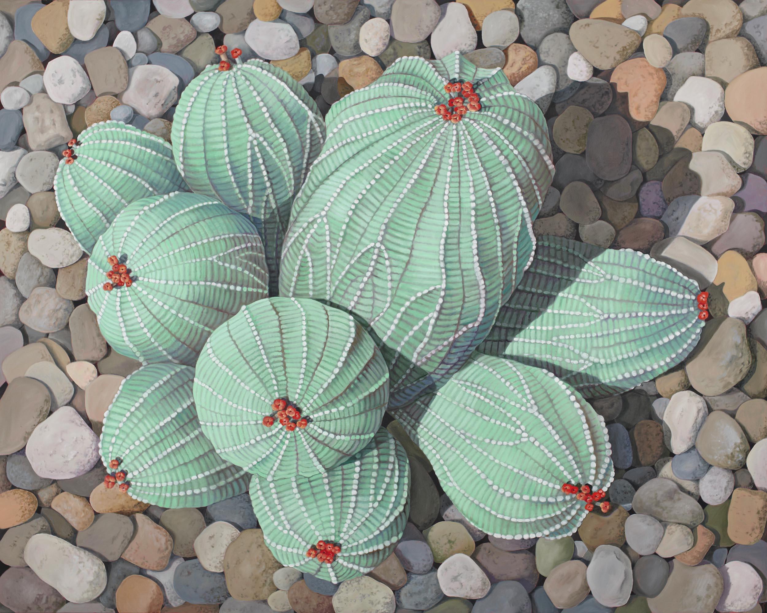 Euphorbia 3, 48 x 60 inches
