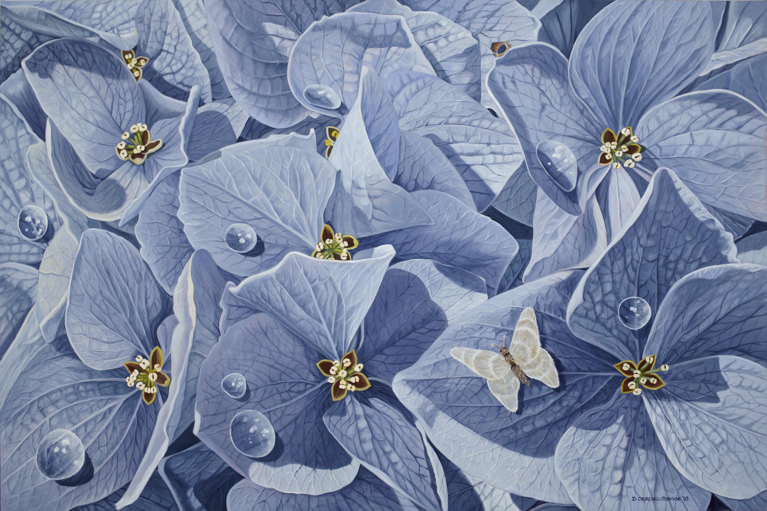 Inner Hydrangea, 48 x 72 inches