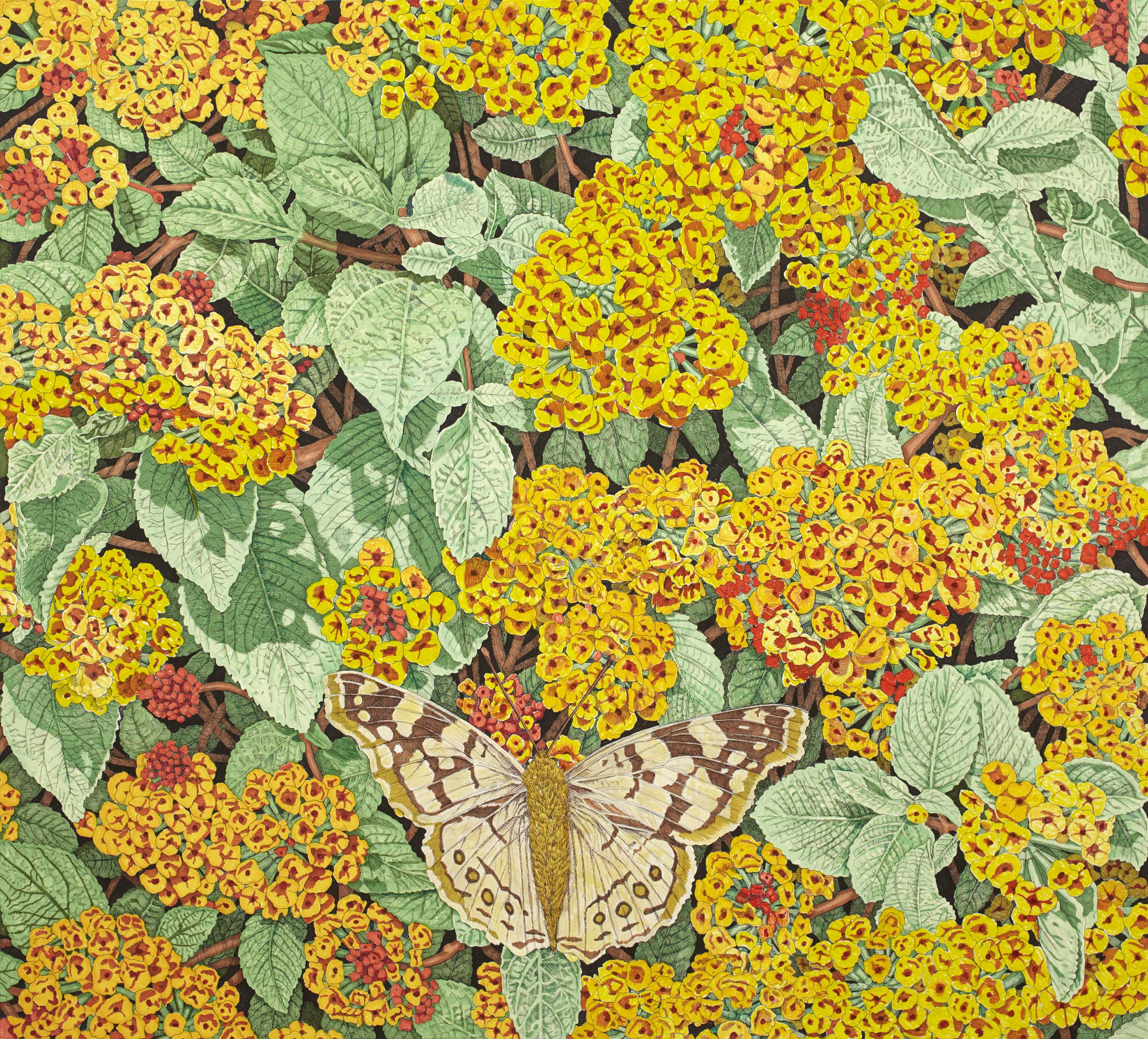 Moth on Lantana, 38 x 42 inches