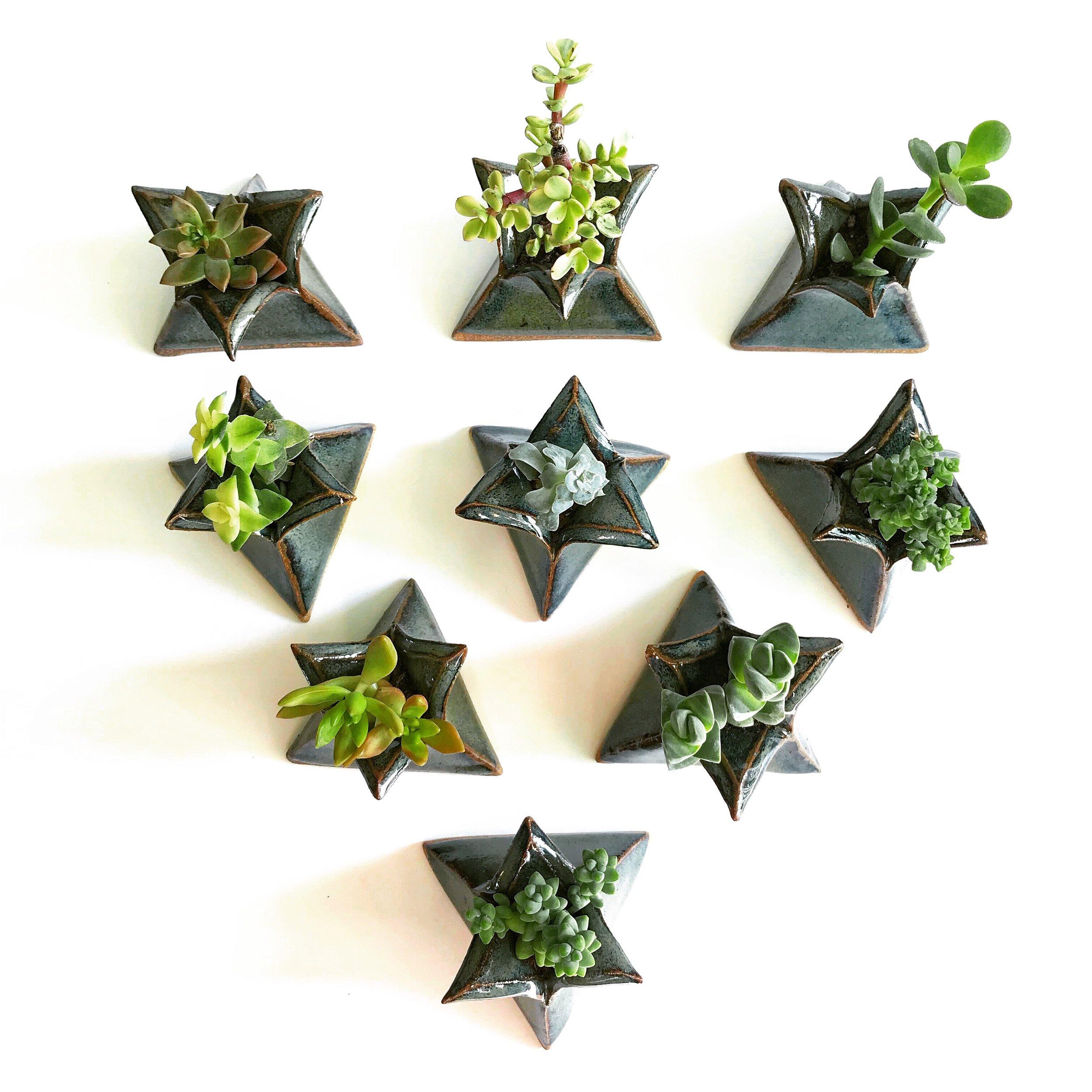 Triangle Planters.jpeg