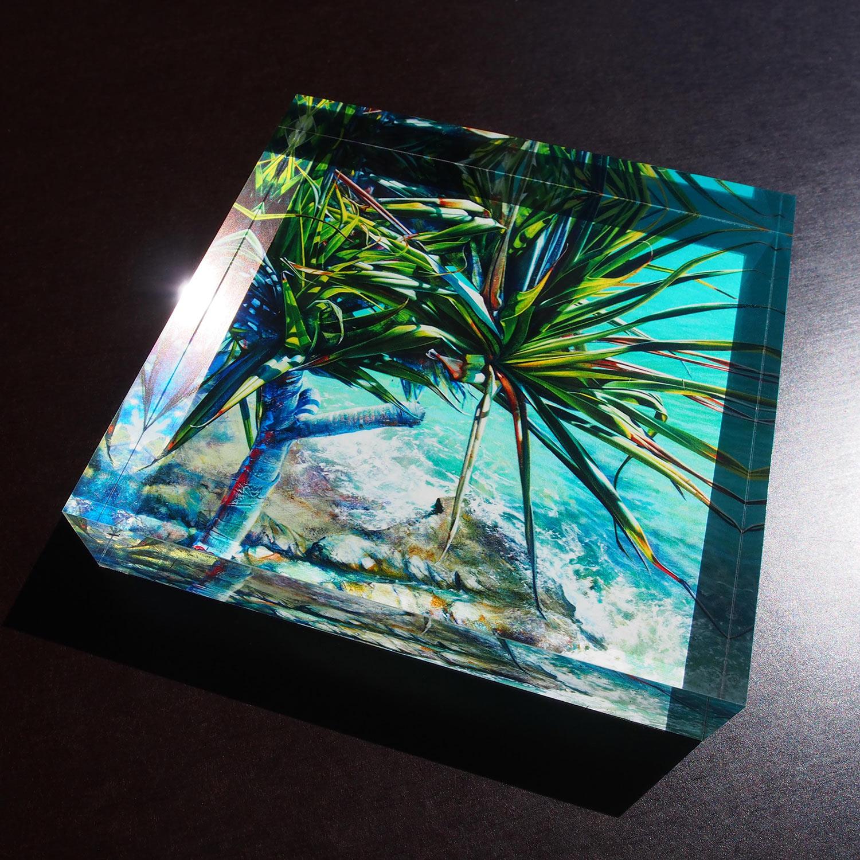 Noosa Pandanus_crystal block.jpg