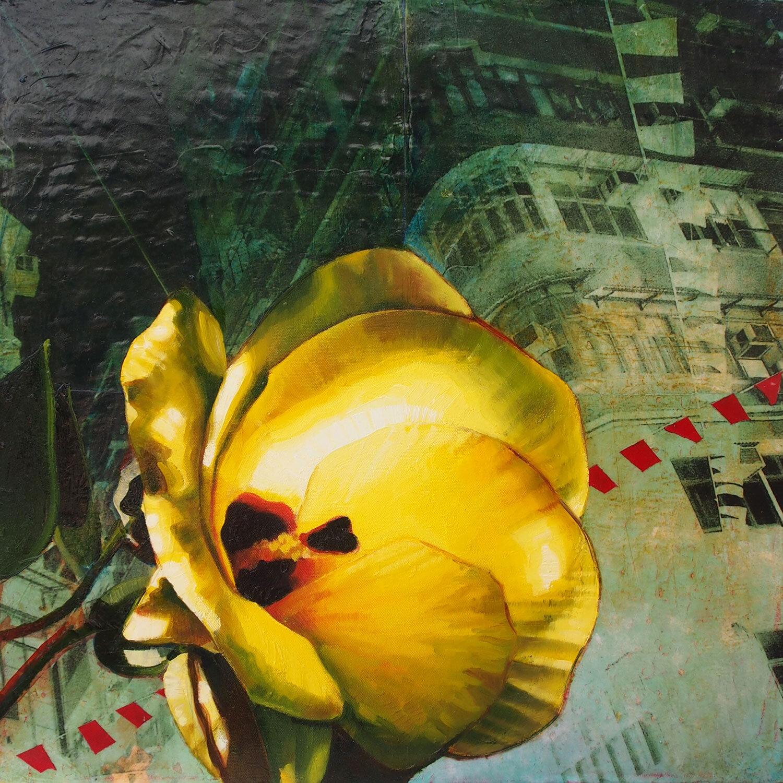 Hong Kong Hibiscus 1 - 2013
