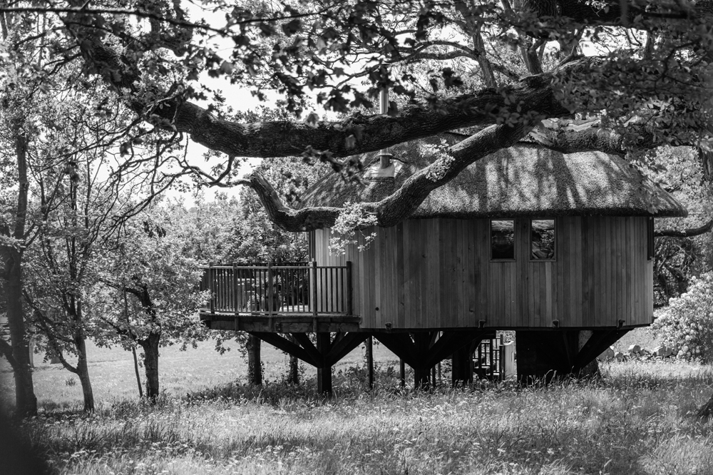 Deer-Park-The-Tree-House-BW.jpg