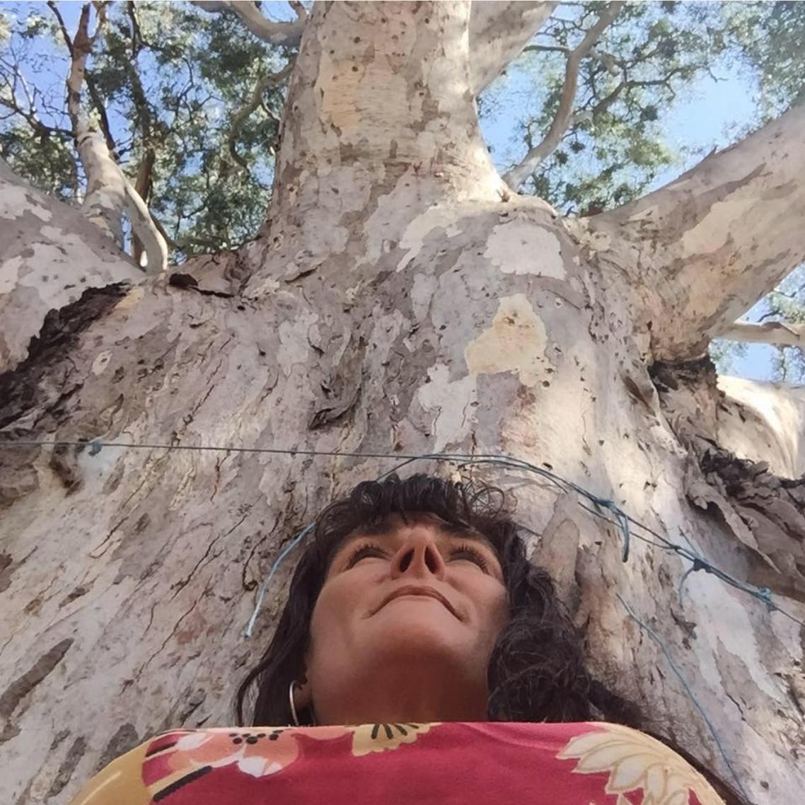 Screen Shot 2019-07-31 at 12.16.09 am.png