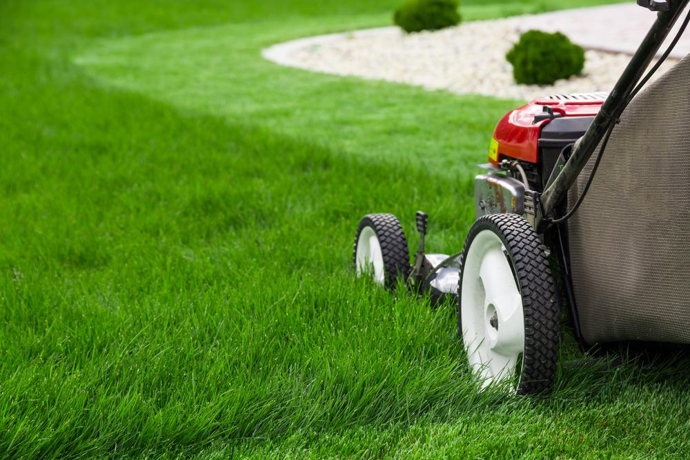 Lawn-cutting.jpg