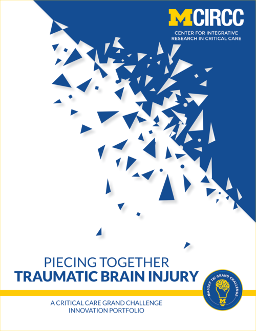 View our TBI portfolio (PDF)