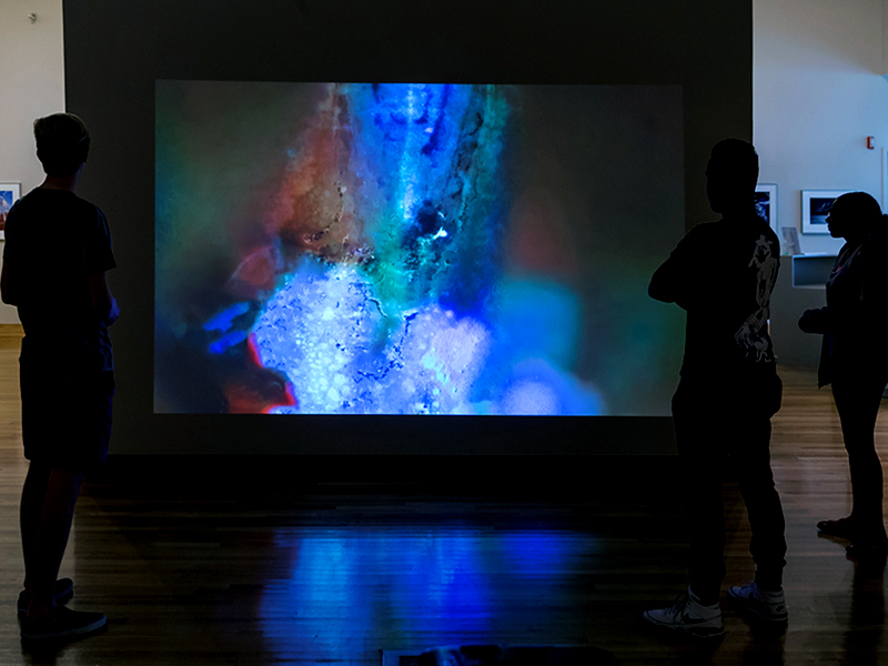 Sun Notations (installation view)