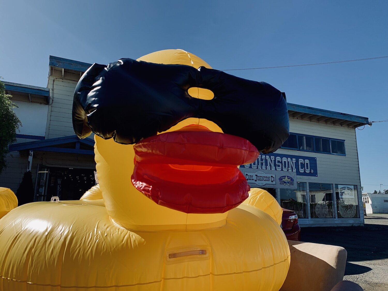 duck_floatie.JPG