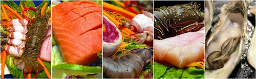 Fish collage of lobsters salmon oysters for pescatarian diet