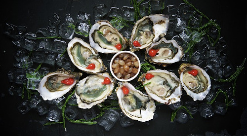 luxury oysters