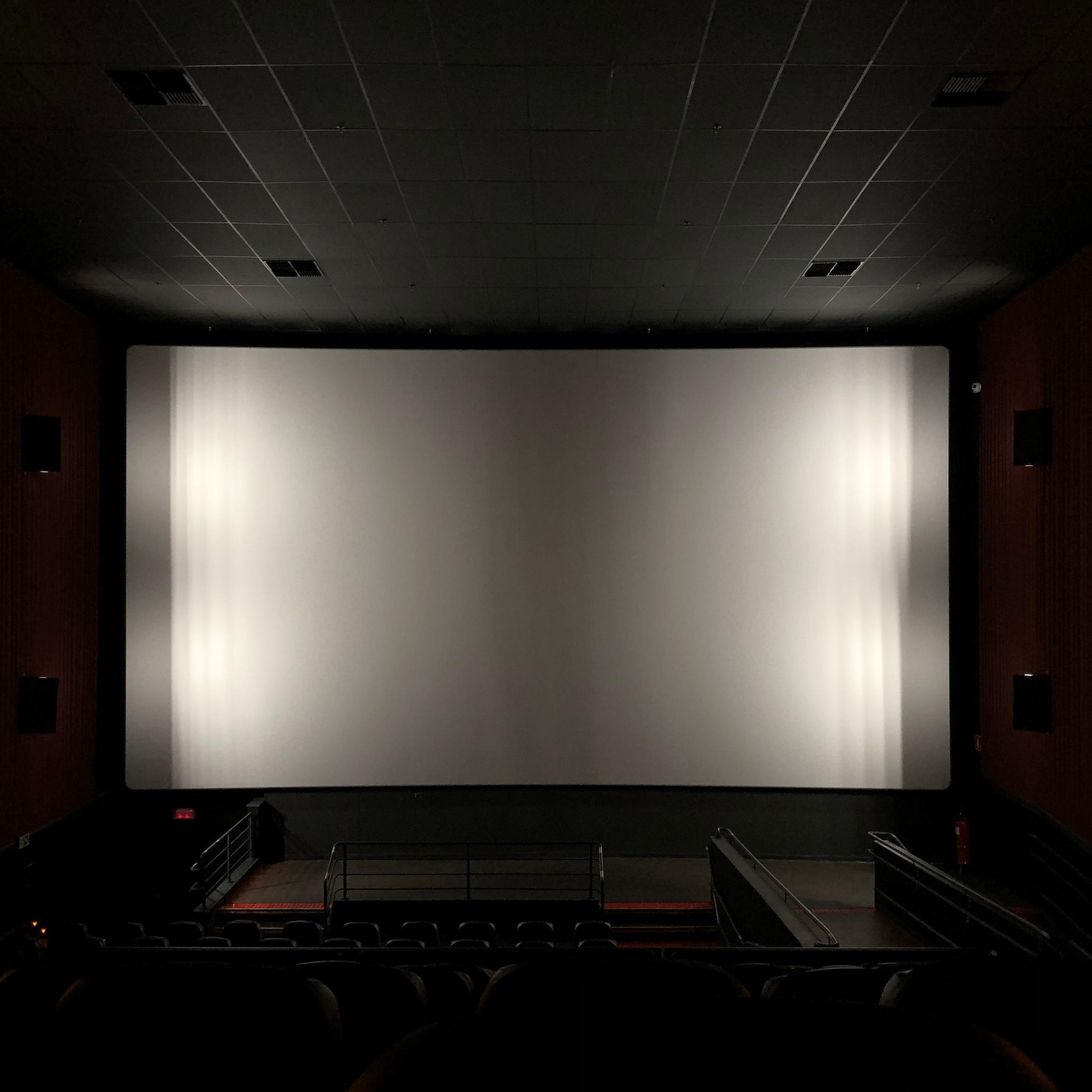 Screenings & Panels -