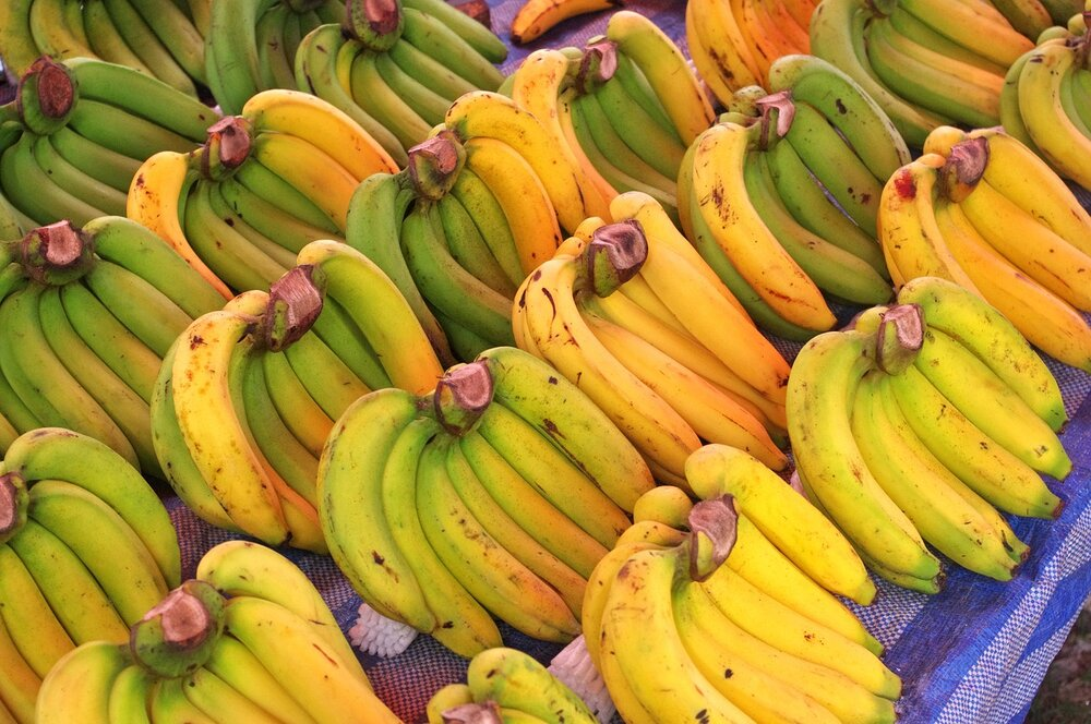 New Uses For Old Bananas