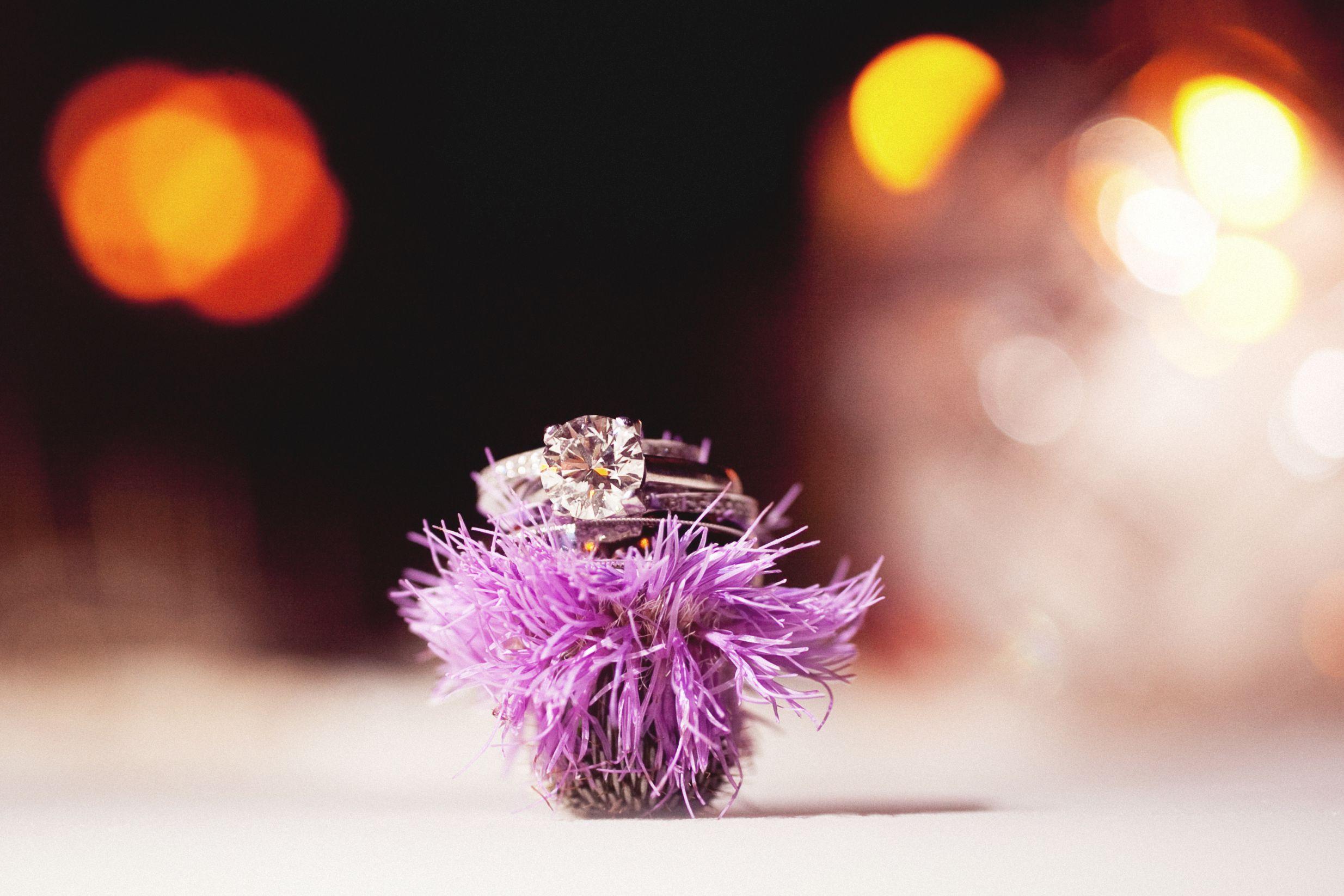 eephoto.katie.tom.wedding-185.jpg