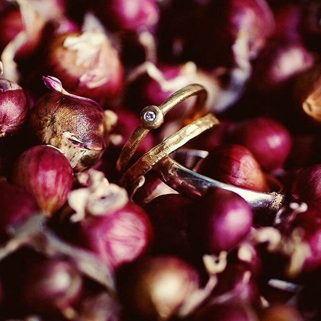 ✨ bride + groom rings with garlic bulbs ⠀⠀⠀⠀⠀⠀⠀⠀⠀ Since we had to #fallbehind 🍁 for #daylightsavings today, here's a 🔟 year wedding detail throwback—the garlic bulbs were favors from the bride's father! . . . . . . #wildandgolden #eephotography #erinwoolsey #lightinspired #ohwowyes #dearphotographer #weddingdetails #dfwweddingphotographer #gardenwedding #acuwedding #iowaweddingphotography #weddingparty #weddingfun #subject_light #thehonestcapture #lightinspired #candidphotography #lookslikefilm #hellostoryteller #visualstoryteller #weddingrings #weddinginspo