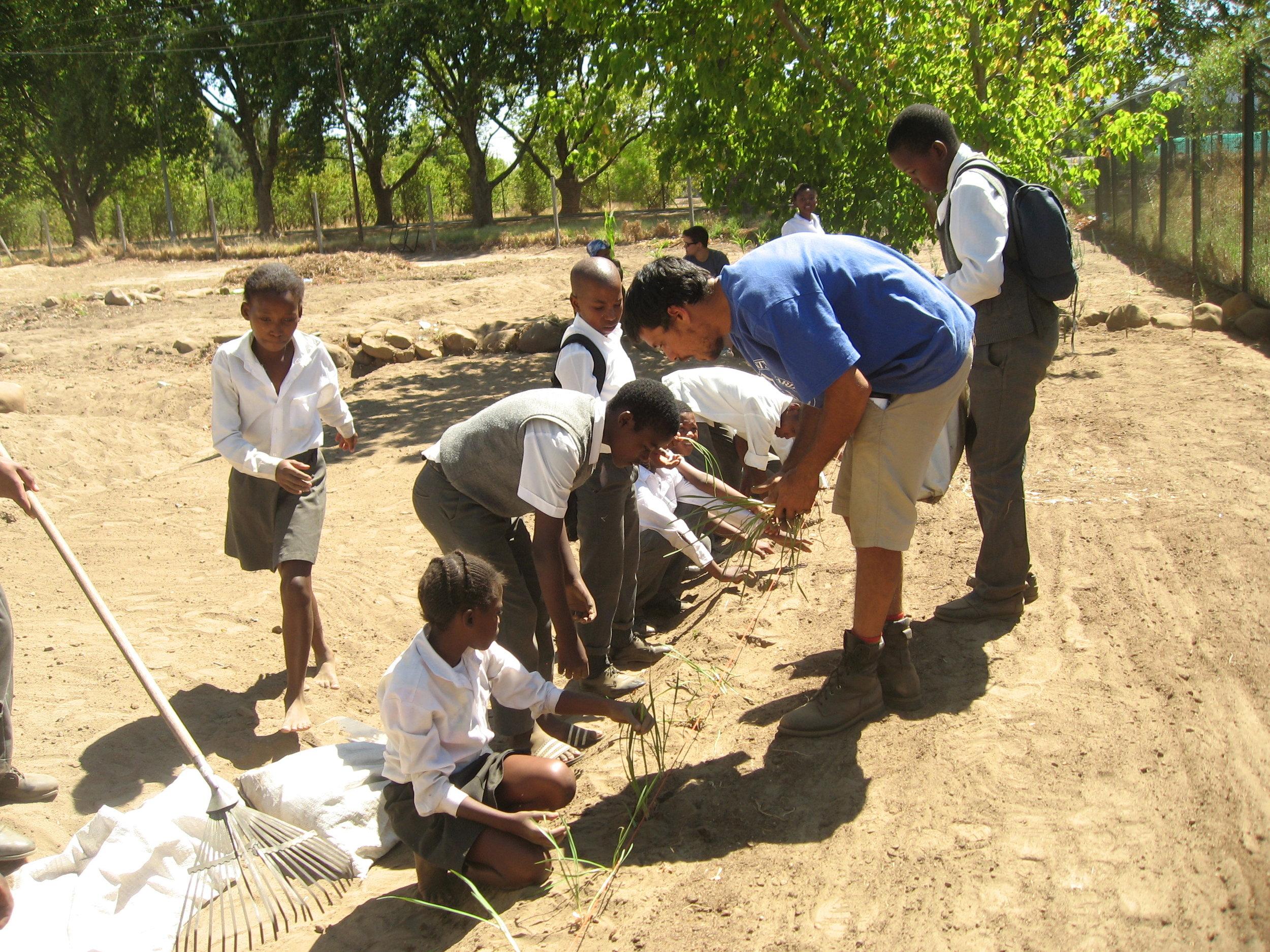 3. Food garden programmes at schools.JPG