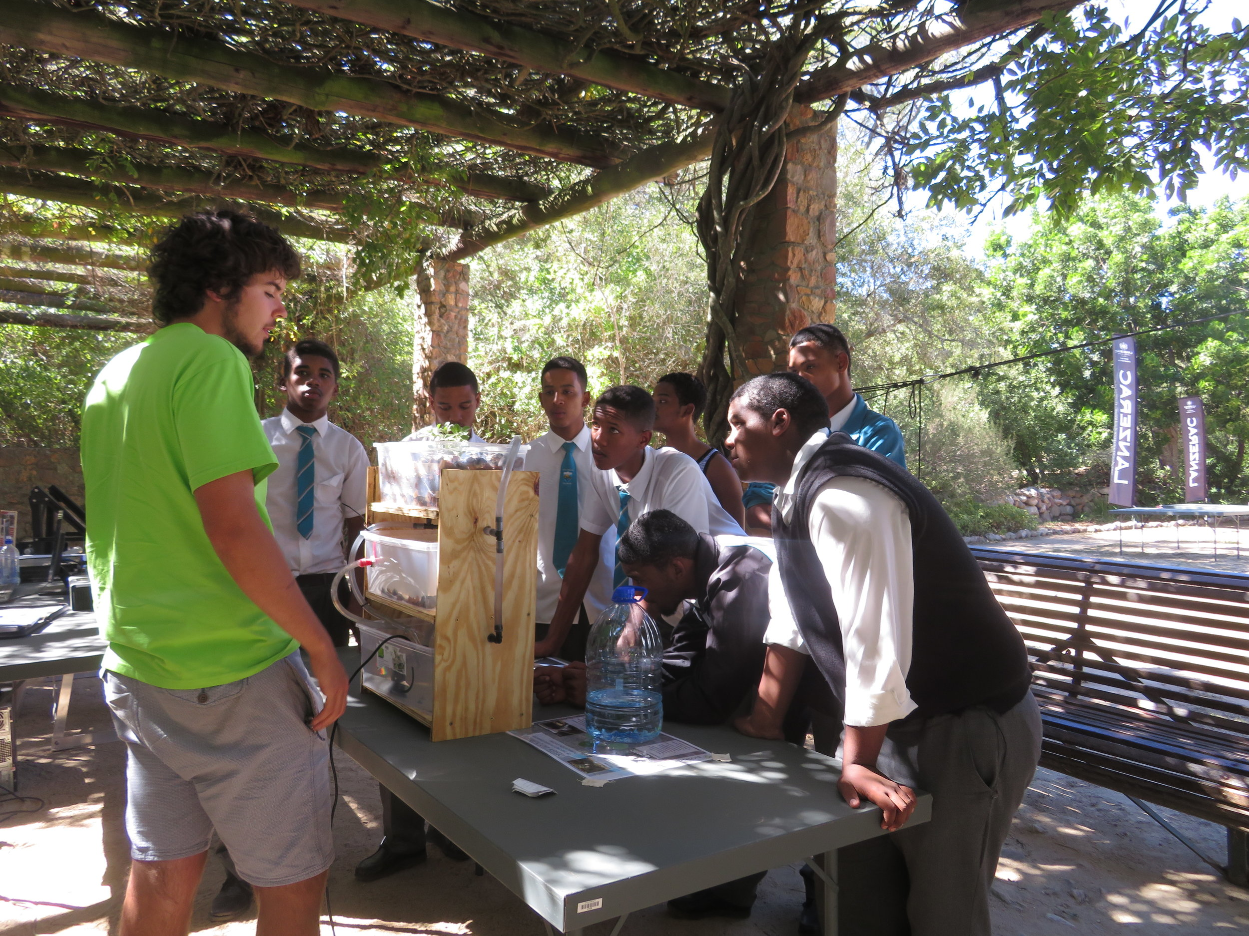 A volunteer showing youth how aquaponics works