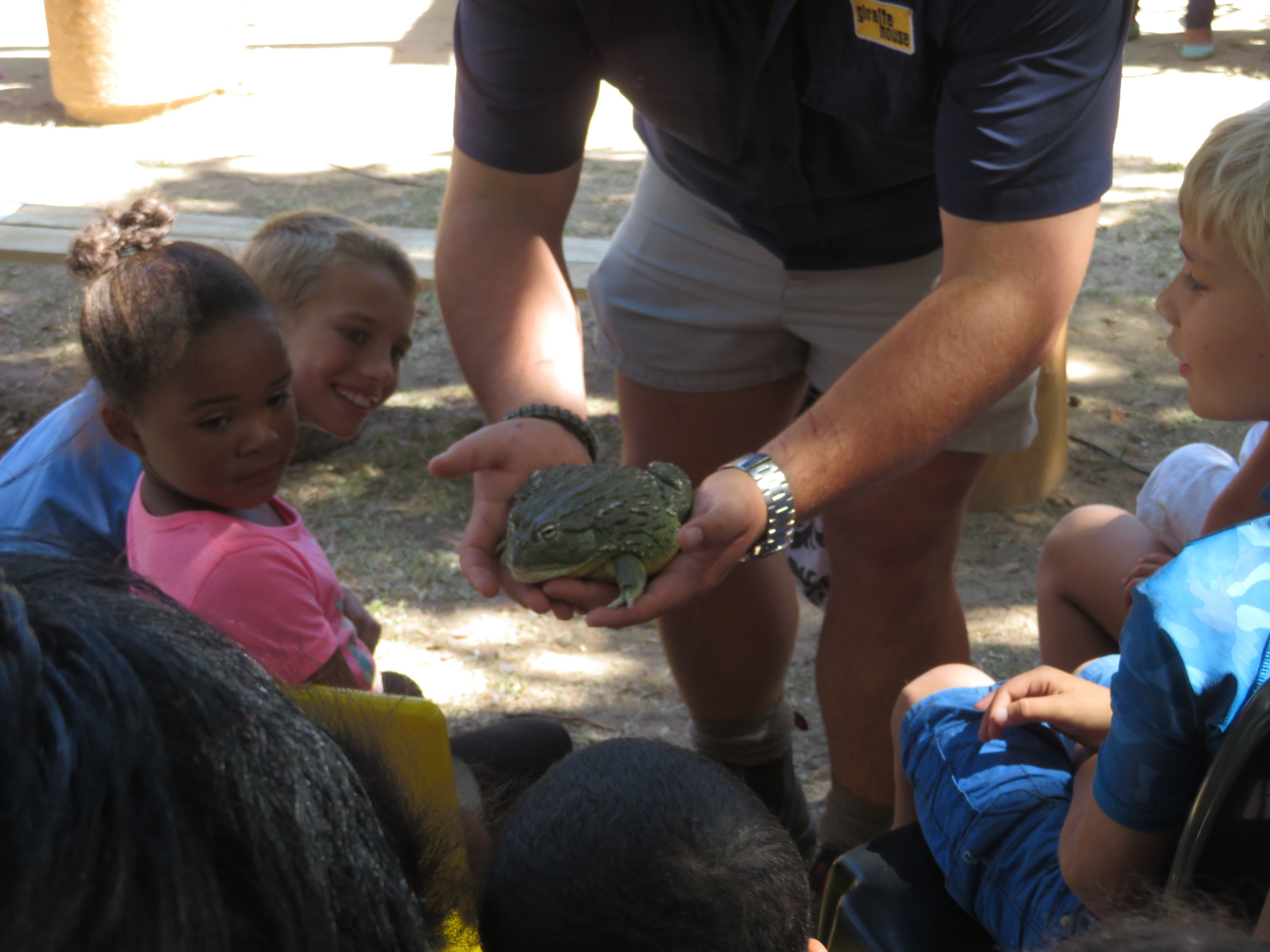 Giraffe House made a special visit to the Water Wise Festival to teach children about reptiles and more!