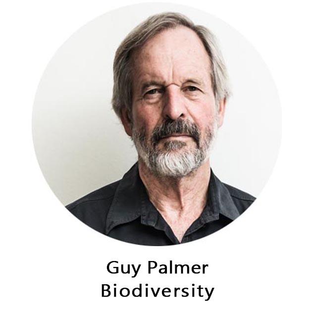 Guy Palmer.jpg