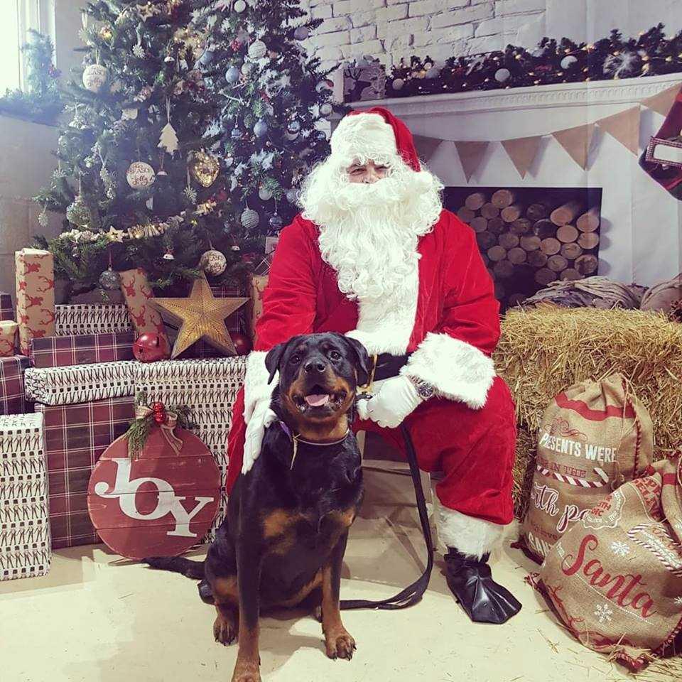 Christmas_Fayre_Santa.jpg