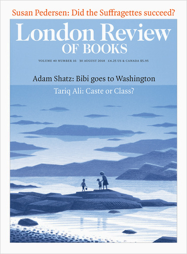 London Review of Books - Sheer Enthusiasm: Feel Free: Essays by Zadie Smith