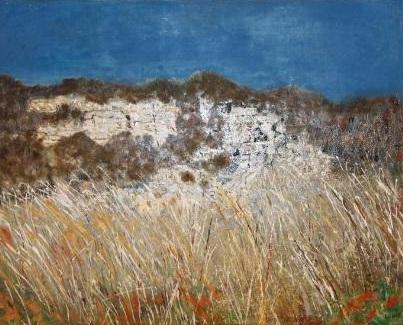 Haifa Cliffs  50 x 40 cm, oil on canvas. #A23 - 2012