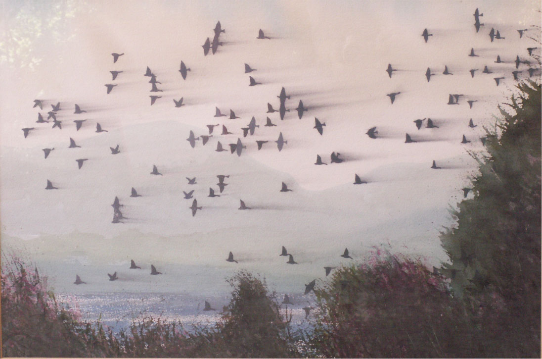Flock At Dawn  Oil on canvas. #A78