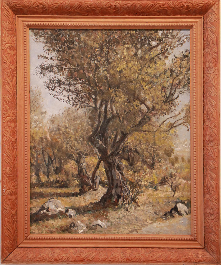 The Olive Tree  60 x 52 cm, oil on canvas. #A1 2012