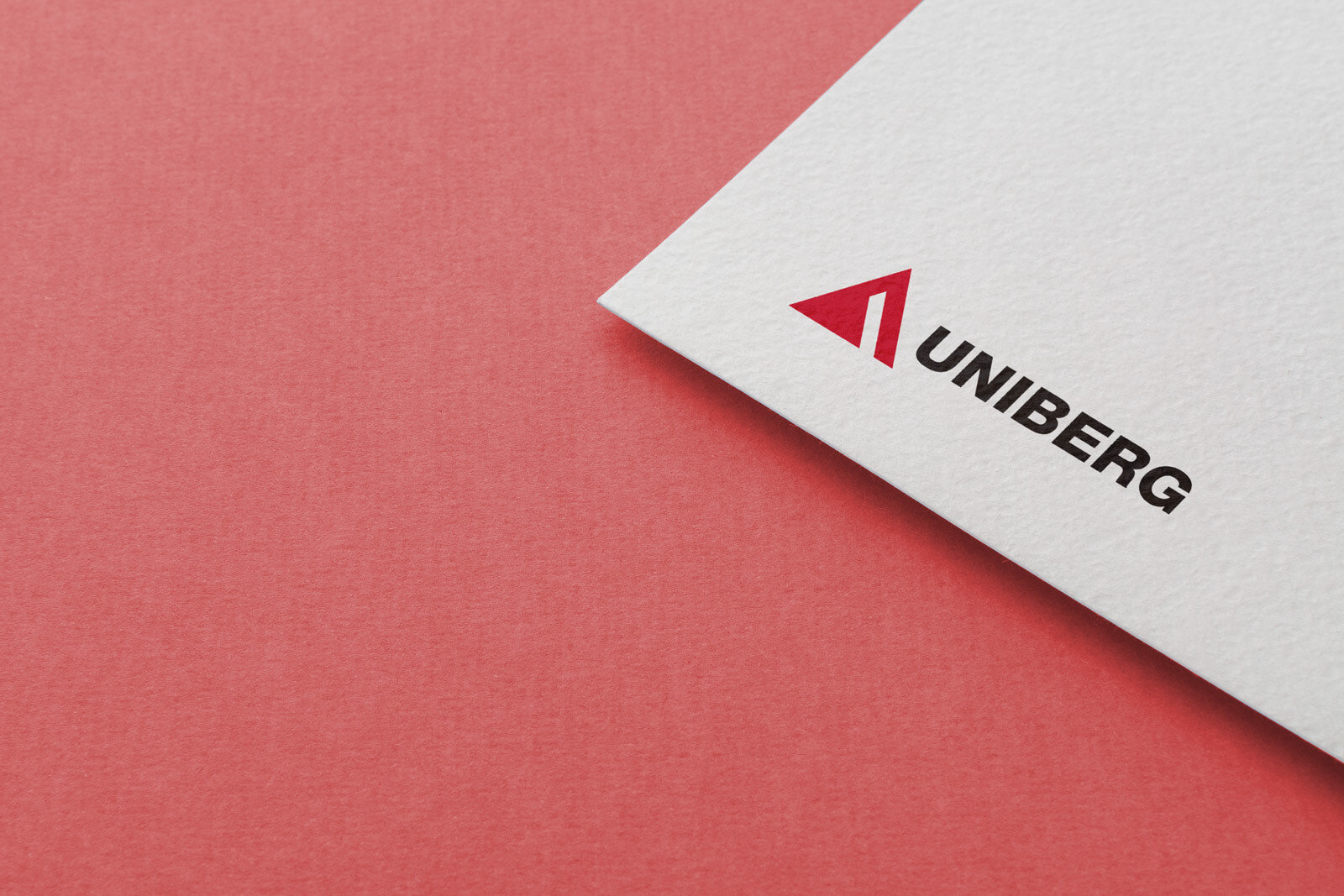 Copy of UNIBERG