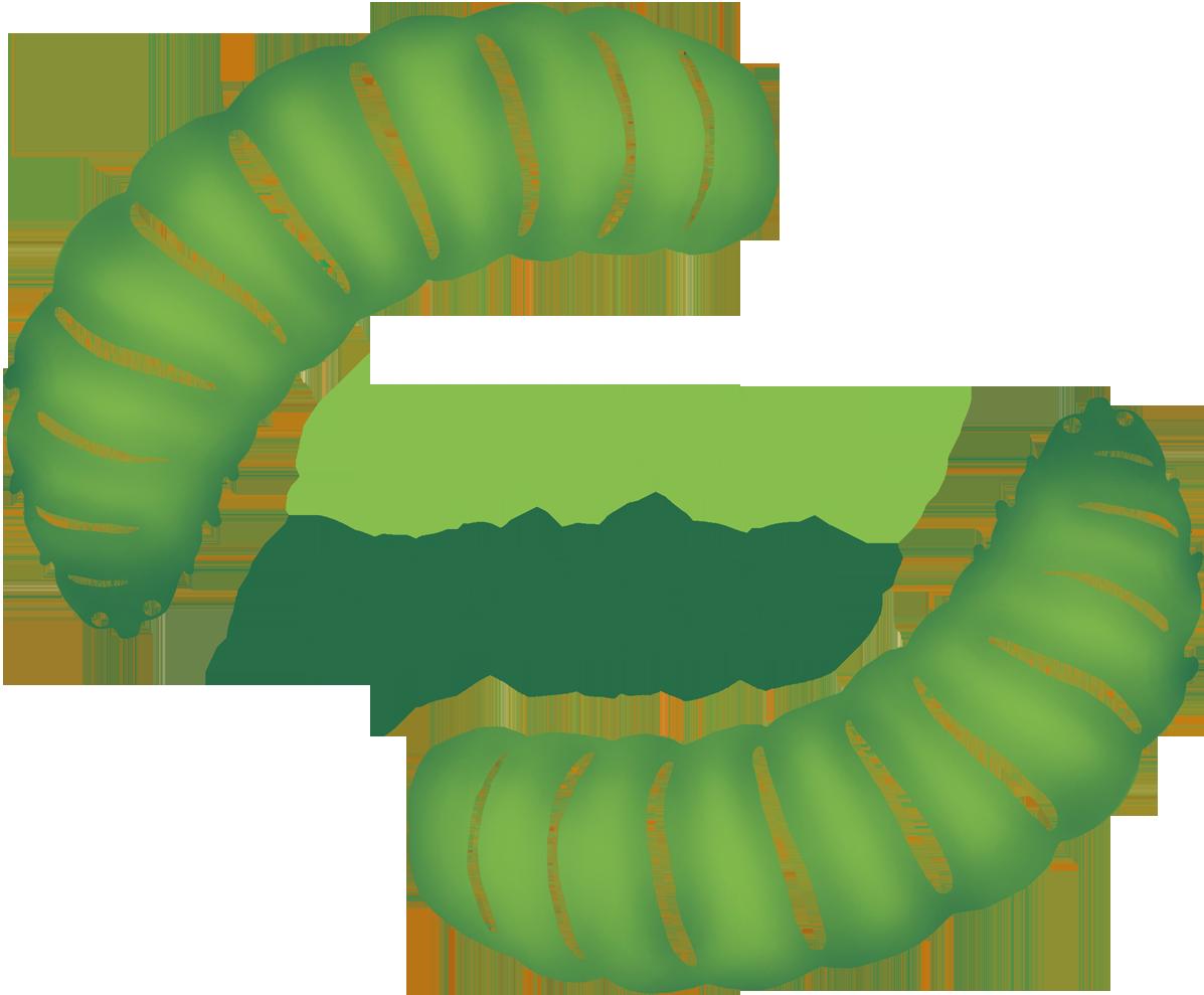 green grubs.png