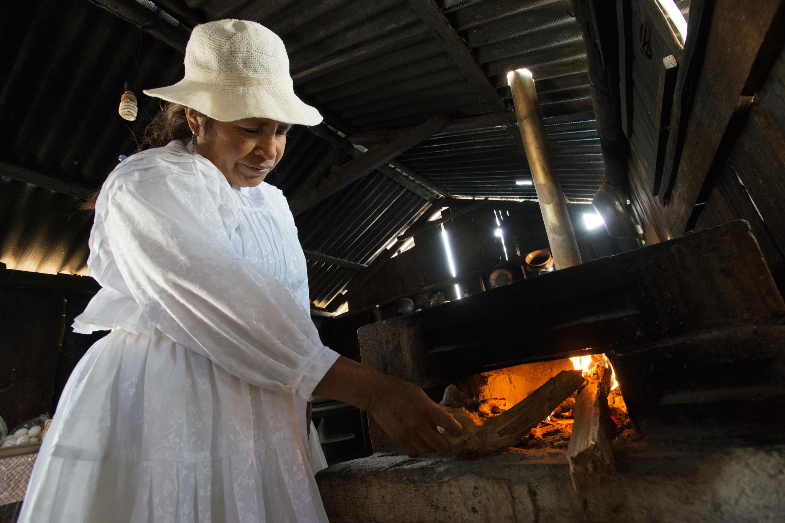 Proyectos Extra - Además de mejorar la seguridad alimentaria también hemos otorgado proyectos que de manera integral, mejoran la calidad de vida de las familias beneficiadas. Estos proyectos son: 8 Centros de estimulación oportuna, 1 banco de semillas, 9 cocinas comunitarias, 78 silos y 130 estufas ecológicas.
