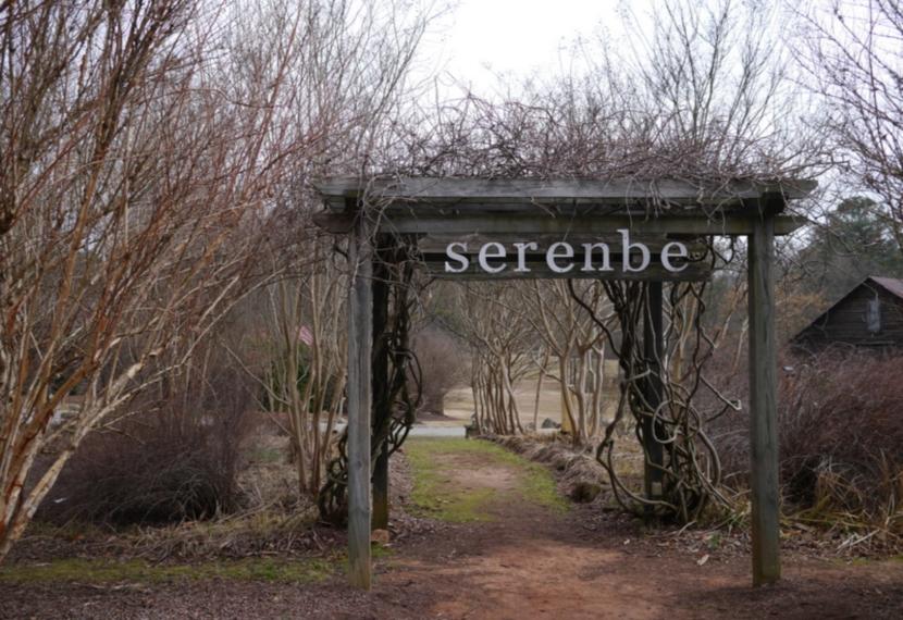 serenbe-4.jpg
