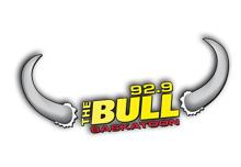 bull_logo.png