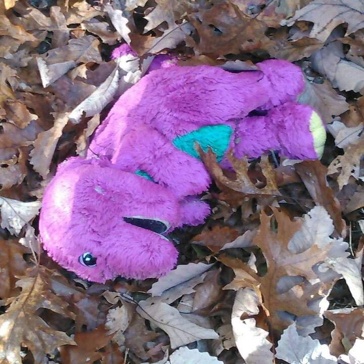 Barney the dinosaur stuffed animal at the cemetery on my first visit.