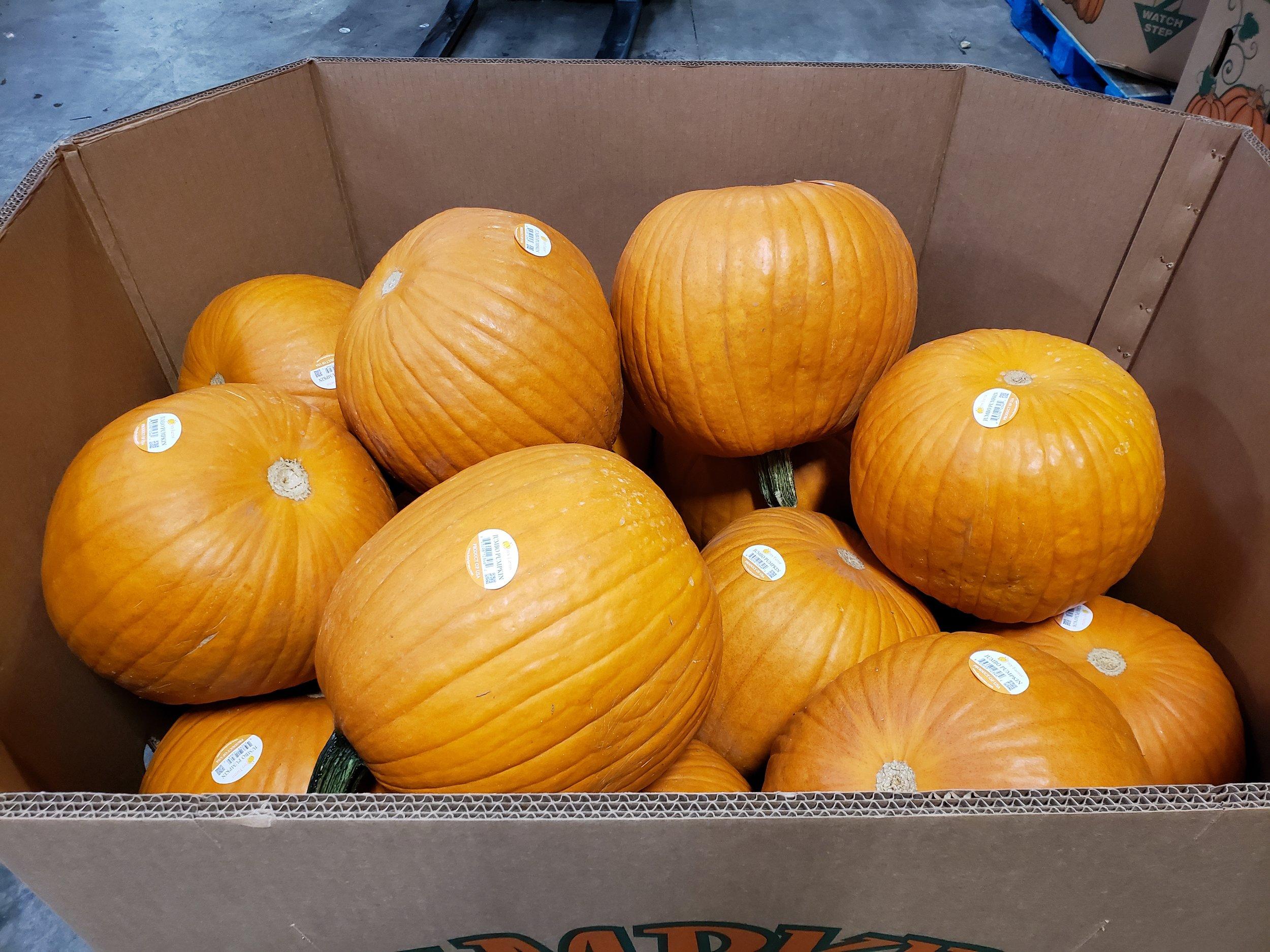 25ct pumpkins 1.jpg